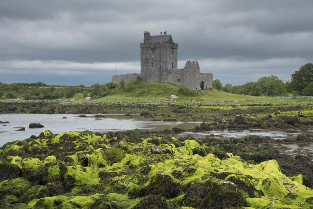 Dunguaire Castle's beautiful view from afar.